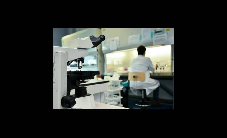 Tumori: arriva il killer che uccide solo le cellule malate (3)