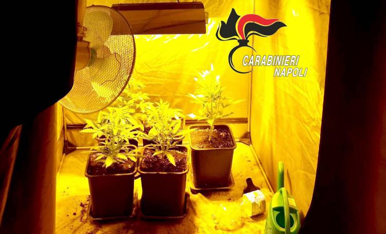 Acate, pizzicati con 150 dosi di marijuana: arrestati due studenti