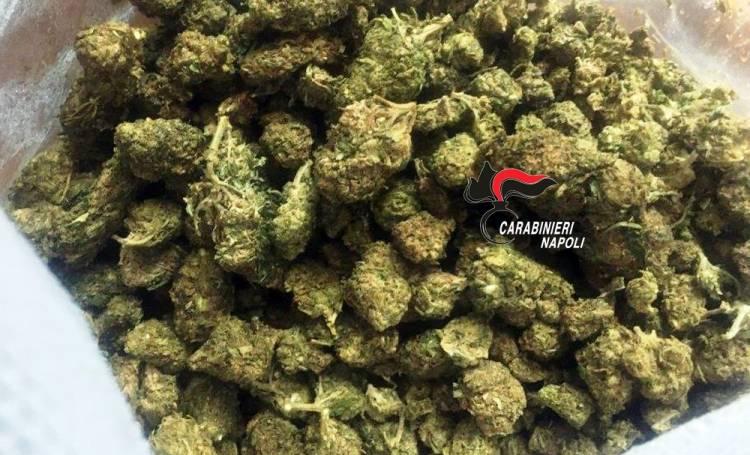 marijuana pozzuoli